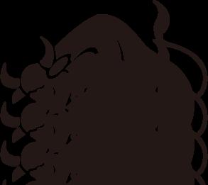 zodiac021